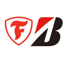 Neumáticos Bridgestone Firestone
